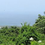 Nevis, West Indies: Bed & Breakfast